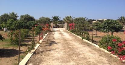 Holiday House Simona - Garden